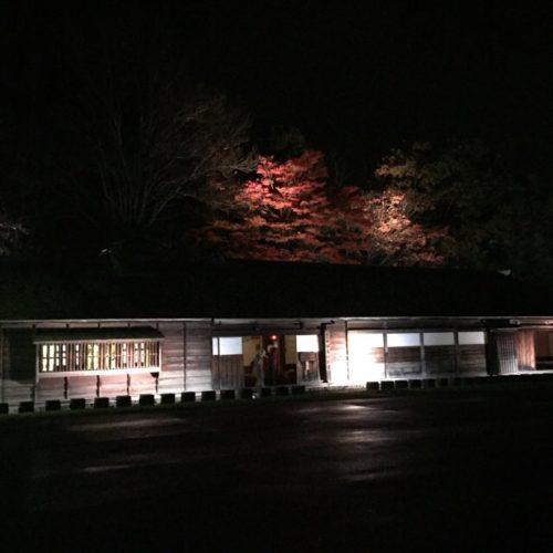 恵庭の紅葉も綺麗ですよーーーーー!!\(^o^)/