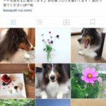 instagramやってます!フォローしてね(#^.^#)