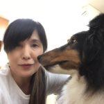 恵庭市の美容室ブーケは看板犬がいる美容室