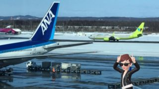 新千歳空港で見た飛行機にテンション上がった⤴︎