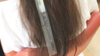 ヘアドネーション後はどんな髪型にしたい?